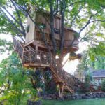 elaborate treehouse with winding staircase