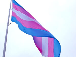 blue, pink, and white transgender flag against very light blue sky
