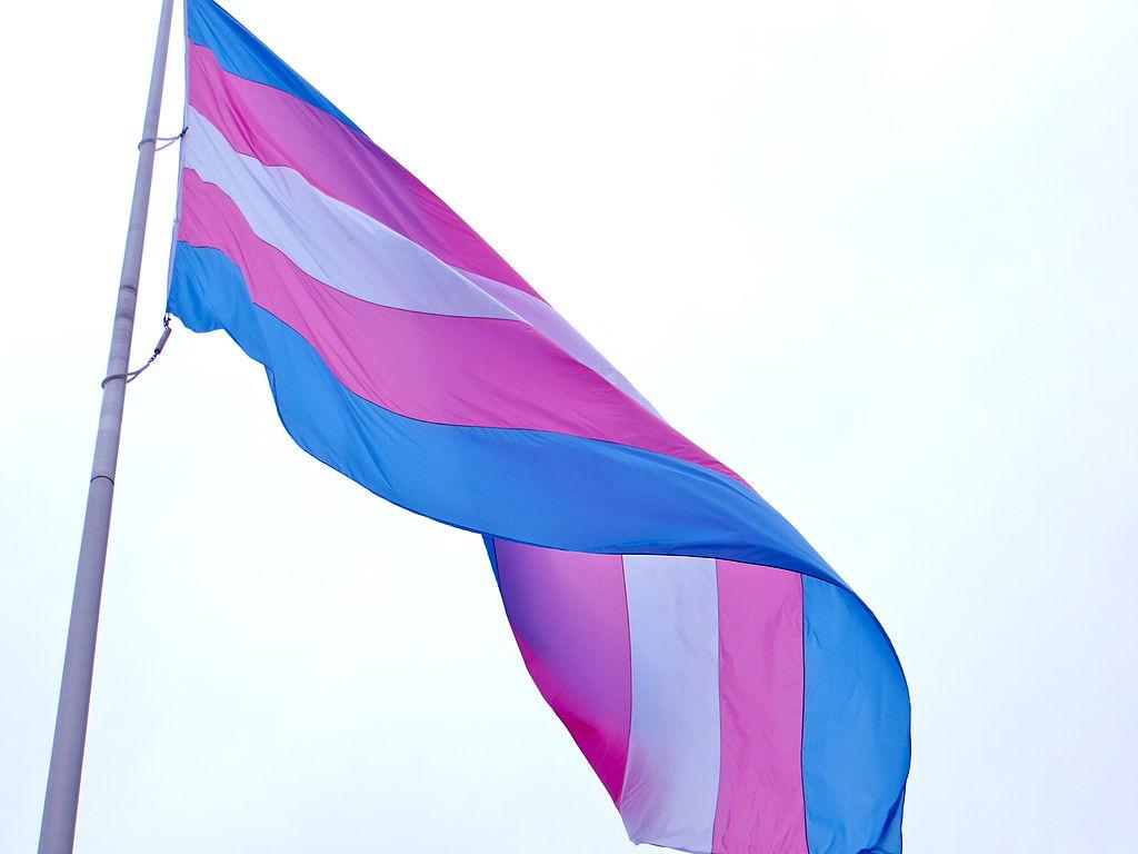 blue, pink, and white transgender flag against very light blue sky